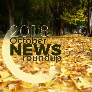 2018 october news roundup while ginko leaves carpet approach to shrine in Osaka.